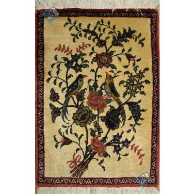 پشتی دستباف بیجار نقشه گل و بلبل پشم و ابریشم